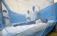 Niger hit by unprecedented spate of child deaths: MSF