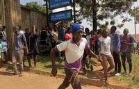 Kasubi tombs fire: Buganda royal twins survive