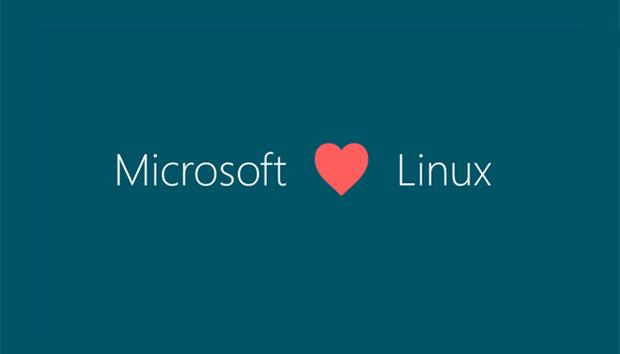 100515microsoftlinux100619799orig