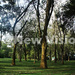 Entebbe Botanical Gardens leased out