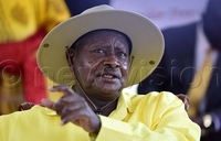 CEC recommends lining up for NRM primaries