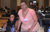 Women MPs push for implementation of laws, resolutions