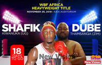Heavyweight title: Kiwanuka vows to knock-out Dube