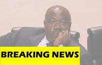 Gabon soldiers announce national council, shots heard