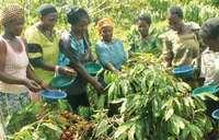 Kateregga holds the key to saving women in Kyabakuza