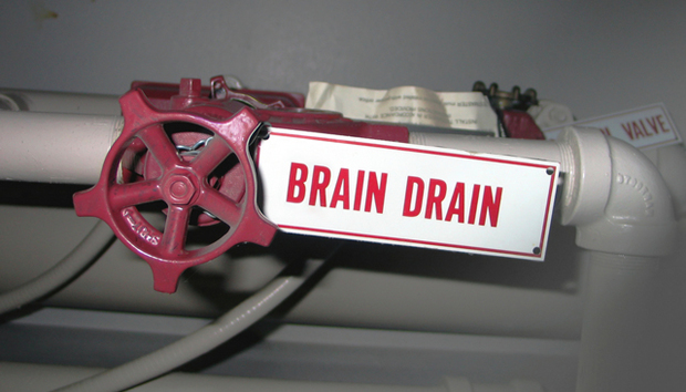 No Brain Drain in Bulgaria as IT Experts Stay Put | IDG Connect