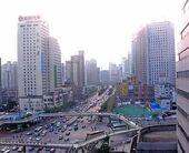chinashang-320x518