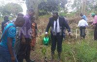 Bugema University goes green