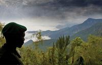 NGOs call for oil drilling ban at Africa's Virunga wildlife park