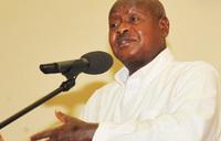Banana, cassava diseases attack 47 districts