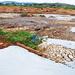 Jinja hides factory pours cancerous waste in L. Victoria