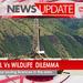 The oil Vs wildlife dilemma
