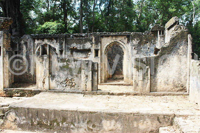 edi ruins in atamu enya  he rich historical and wahili cultural heritage at the  enyan coast is part of the appeal for gandans