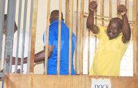 Kitatta's appeal case for Friday