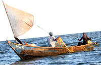 Fishermen warned against promiscuity