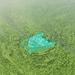 Pollution killing Lake Victoria