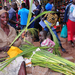 Palm Sunday:Christians urged to take part in the holy triduum