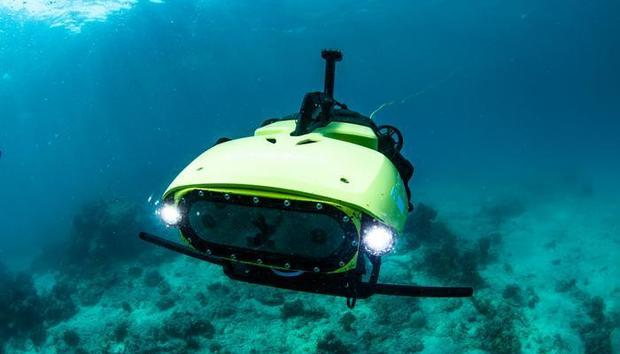 Undersea robot 'crop duster' replenishes Great Barrier Reef coral