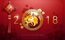 Gallery: Five investment themes for China's Year of the Dog