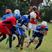 Lacrosse League: Mubs outclassed by Panthers