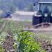 Nobel winners slam Greenpeace on GMO crops