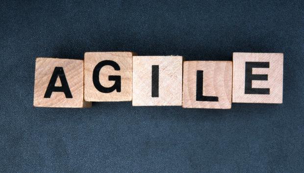 agile2100597949orig