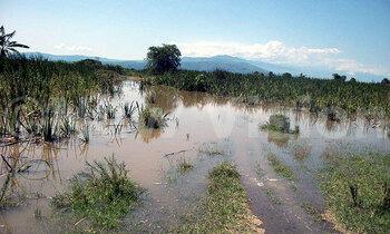 Floods 350x210
