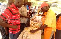 10,000 Teso households to grow sweet potatoes