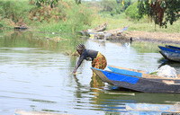 A refugees' idea to restore a degraded Ugandan lake pays off
