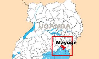 Mayuge 350x210