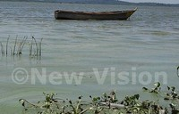 5000 fishermen die on Lake Victoria every year-survey