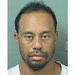 Tiger Woods arrested on suspicion of drunk driving