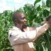 Adding value to maize, changing Busoga lives