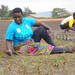 From dust to green: Nyamityobora grounds renovation work on the right track