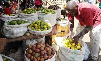 Fruits 350x210