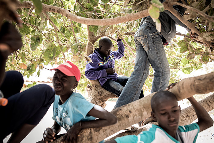 oung street children also referred to as alibe are seen playing in a tree in a quarantined area at a refuge for newly arrived street children outside akar on pril 10 2020