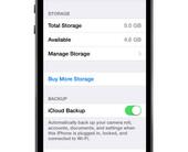 storage100159832orig500