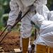 COVID-19: Over 800,000 dead since outbreak