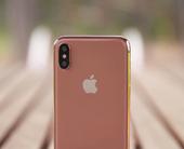 iphonexrosegoldleak100752760orig