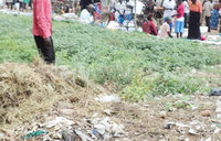 Garbage, market compete for space in Kibuku town