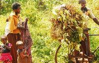 Who is behind Uganda's swelling population?