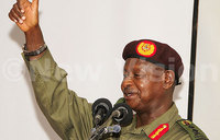 Diaspora NRM members support Museveni for 2016 bid
