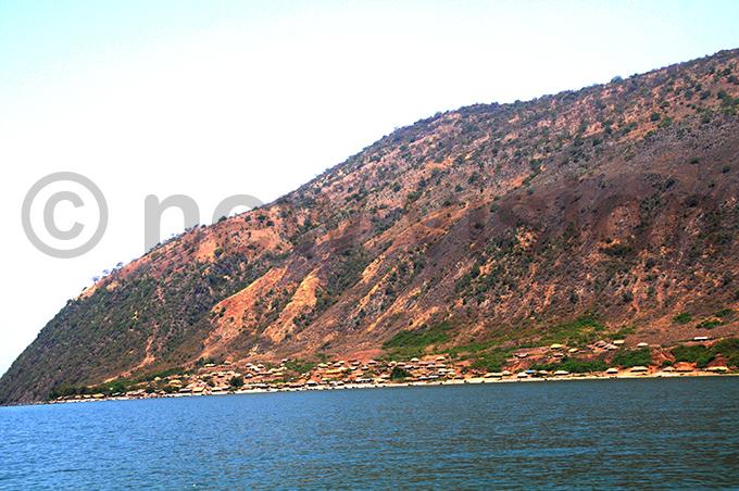ingfisher site 3 at ugoma sunzu village yangwale subcounty in oima district ile hoto