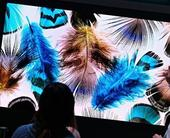 CES 2019: Hisense showcase 8K and a MicroLED showpiece of their own