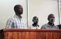 Teacher, businessman jailed over ivory smuggling