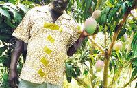 Arua's Ajedra lives ,speaks farming