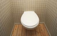 Hiding in toilets, Swedish burglar calls police for help