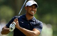 Five drugs found in Tiger Woods' system after arrest