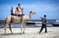 Tourist arrivals to Kenya tumble over security concerns