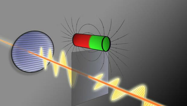 lightpolarized100045444large500